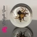Plug Araignée en résine