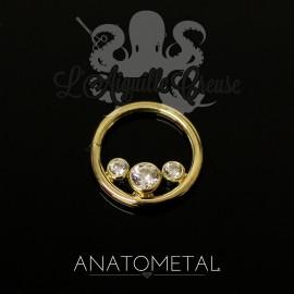 Anneau en or jaune 18k Anatometal - Seam Ring