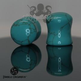 Paire de plugs en Turquoise - Diablo Organics