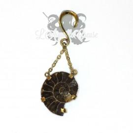 Paire de poids Ammonite et bronze